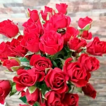 Кустовые розы - Склад-Цветы.рф