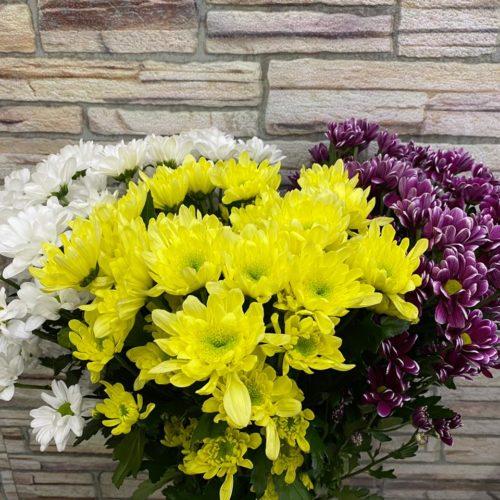 Хризантема - Склад-Цветы.рф